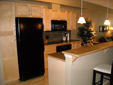 Edmonton Du centre 2 chambre à coucher Condominium À louer