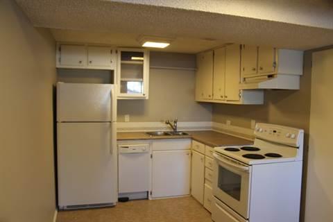 Edmonton Du centre 1 chambre à coucher Appartement en sous-sol À louer