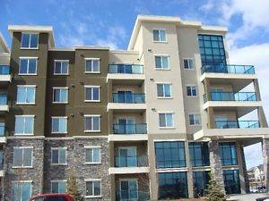 Edmonton North East 2 bedroom Condominium For Rent