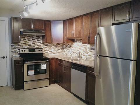 Edmonton Basement Suite for rent, click for more details...