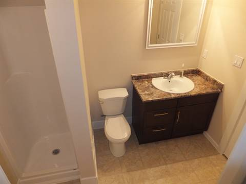 Edmonton Maison. Lower Level bath (access from Bdrm 4 and hall)