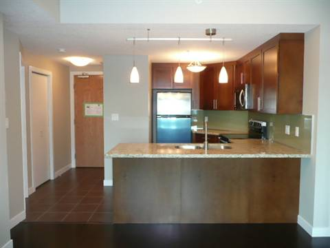 Edmonton North East 1 bedroom Condominium For Rent