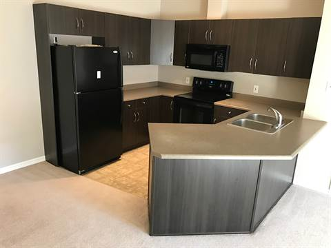 Edmonton South West 2 bedroom Condominium For Rent