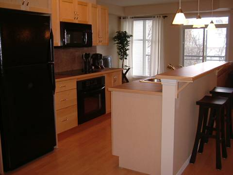 Edmonton Downtown 1 bedroom Condominium For Rent