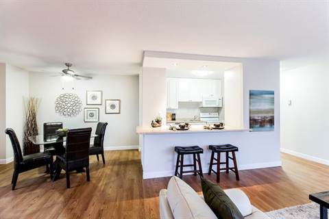 Edmonton downtown one bedroom apartment for rent ad id 1 - Edmonton 1 bedroom apartments for rent ...