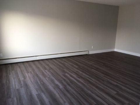 Edmonton Apartment. Living Room