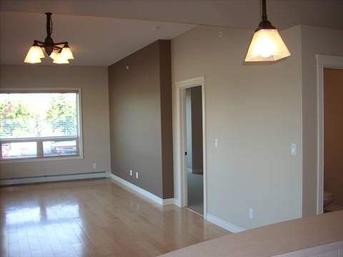 Spruce Grove Condominium. Living room (2 of 2): dark feature wall