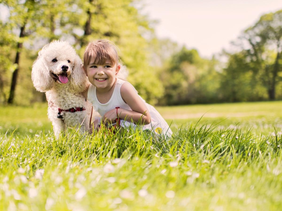 Edmonton Townhouse. A pet-friendly community beside an off-leash dog park .
