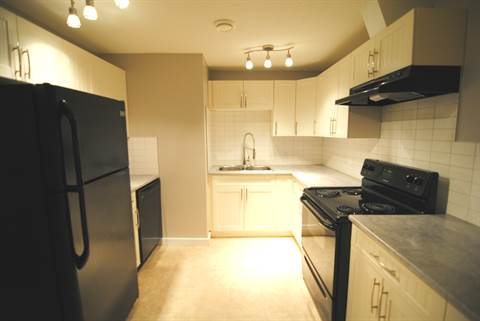 Edmonton North East 3 bedroom Basement Suite For Rent