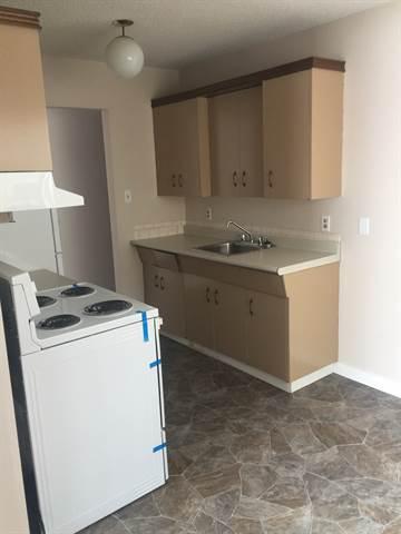 Edmonton West 1 bedroom Apartment For Rent