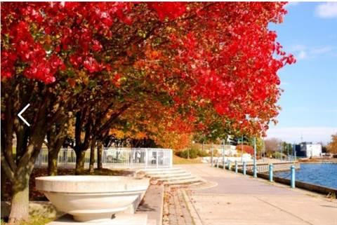 Etobicoke Condominium for rent, click for more details...