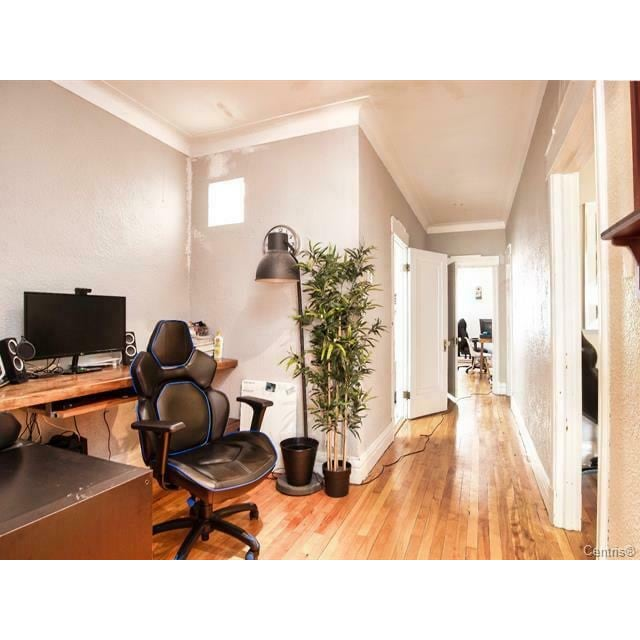 Hampstead Duplex for rent, click for more details...